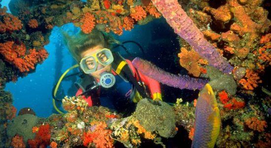 Aruba-scubadiving-divingpassport-diver