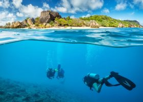 Divingpassport-home-scubadiving-seychelles (1)
