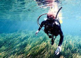 usa-divingpassport-scubadiving-florida-