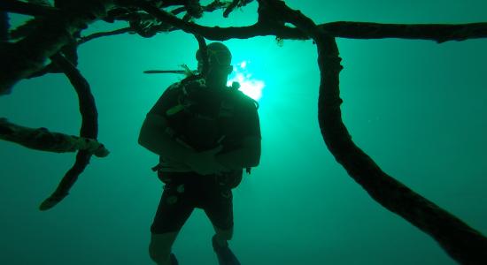 jamaica-scubadiving-divingpassport-diver