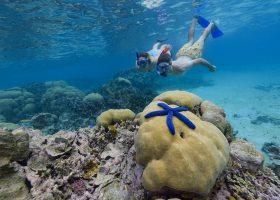 solomon-islands-scubadiving-divingpassport-snorkel