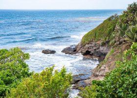 saint-vincent-and-the-granadines-scubadiving-divingpassport-shore