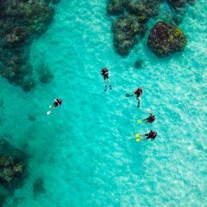 divingpassport-scubadiving-buceo-instagram (3)