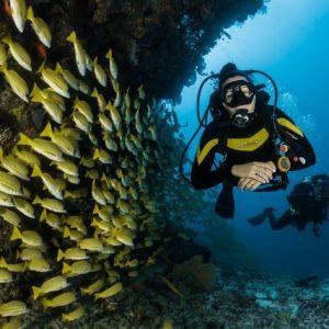 divingpassport-scubadiving-buceo-instagram (7)