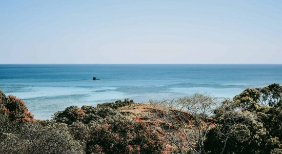 Madagascar View