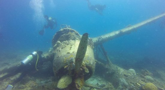 seaplane-micronesia-scibadiving-divingpassport-coral-fish-diver