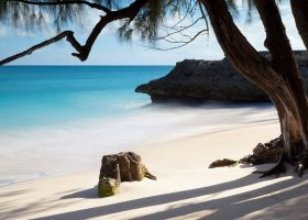 BARBADOS-scubadiving-divingpassport-beach